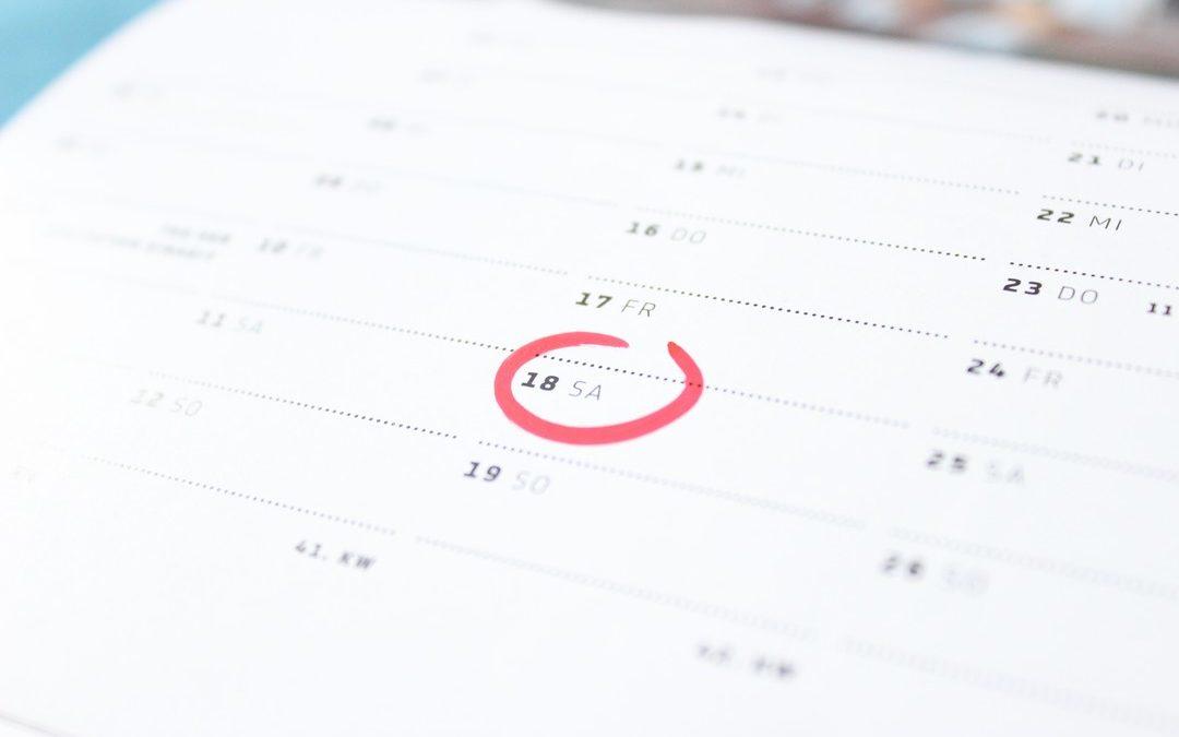NetSuite Development 5: Scheduled Scripts